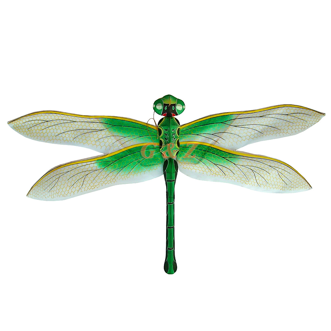 Green dragonfly pictures - photo#1