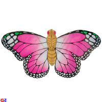 Easy flying butterfly kites - pink