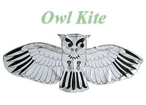 DIY Owl Kite