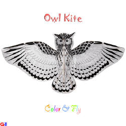 flat owl kite for kids