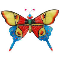 Red/blue rainforest buttefly kites