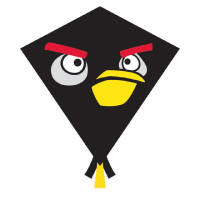 Black Nylon Angry Birds Kites